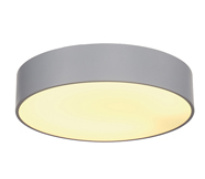 Silver Grey Ceiling Lights