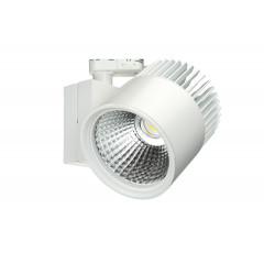 Concentra Dali Multi Circuit LED Track Spot White up to 4500lm output available