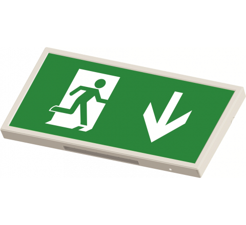 Exit Box Maintained Slim 3W LED