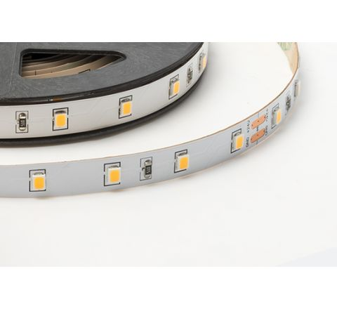 5W LED Single Colour Strip 5M reel